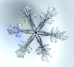 snowflake_image